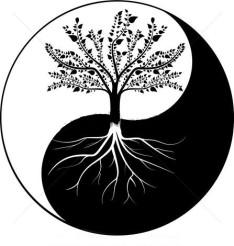 yin-arbre-yang